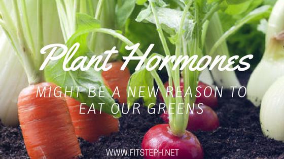 Plant Hormones.png